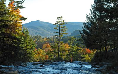 Tips for the Best Leaf Peeping