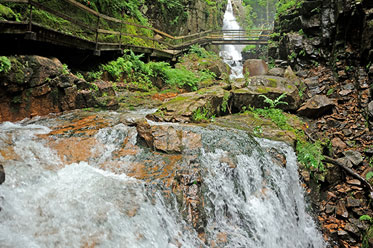 Franconia Notch Hiking Trail near Littleton NH