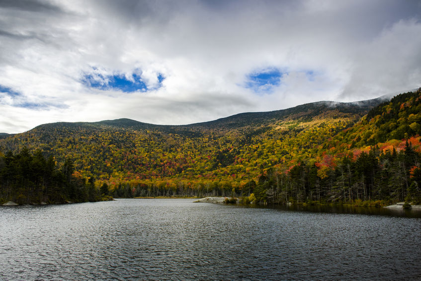 Forest Lake State Park is also something that should definitely make your list of things to do in Littleton NH.