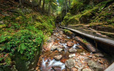 New Hampshire State Parks to Visit on Your Trip